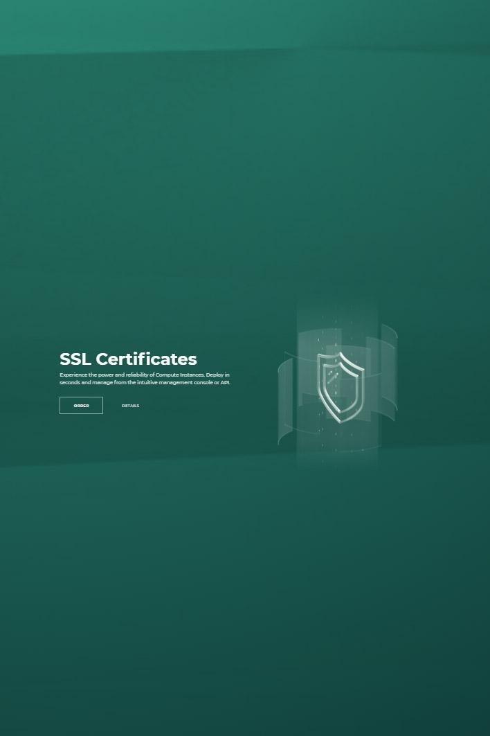 SSL 3